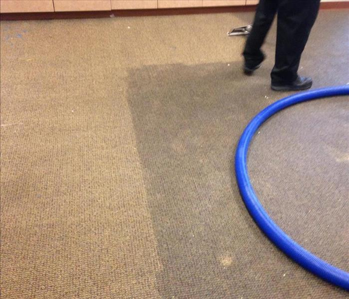Commercial Carpet Extraction