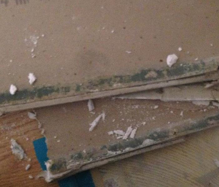 Mold on inside of drywall