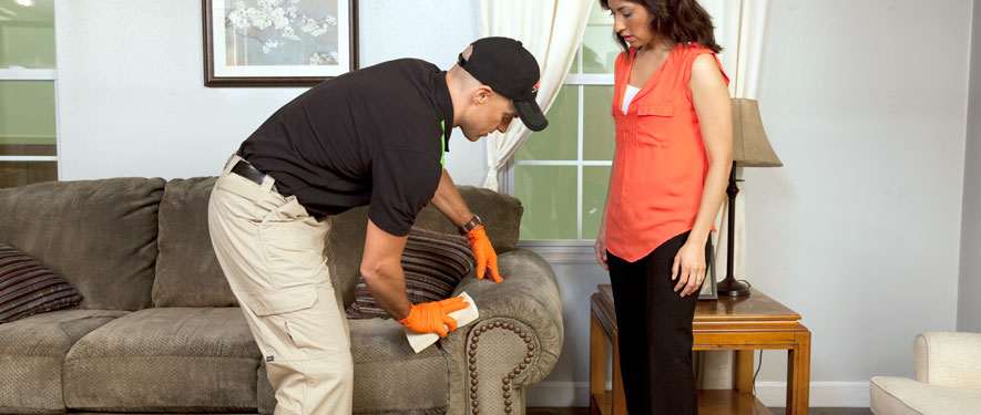 Elk Grove, CA carpet upholstery cleaning
