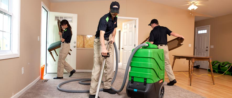 Elk Grove, CA cleaning services